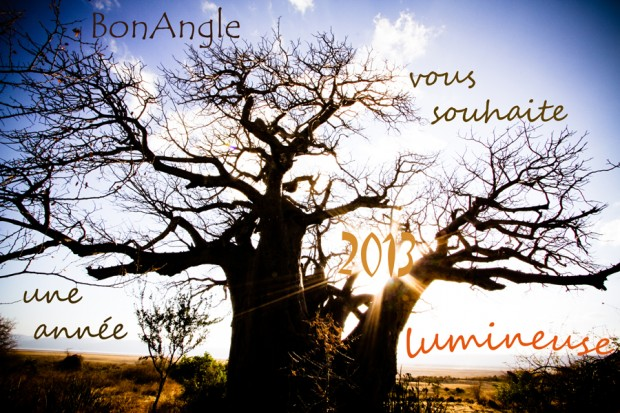 Voeux 2013 BonAngle